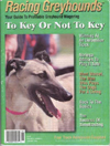Racing Greyhound Magazine part 1